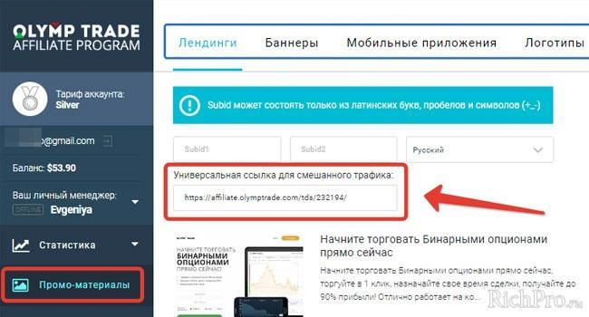"""Рисунок 3 - раздел """"Промо материалы"""" и партнерская ссылка"""
