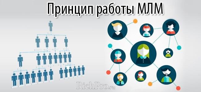 млм сетевой бизнес