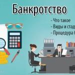 Банкротство— что это такое: понятие и виды несостоятельности + основные признаки и стадии (этапы) процедуры банкротства